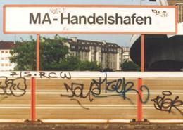 hafen club mannheim